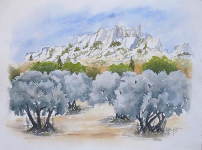 Oliviers au pied des Beaux de Provence