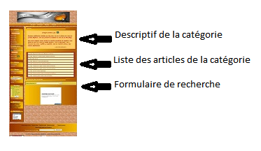 Capture Page Categorie