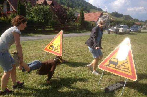 Rallye pédestre-19-6-14 (2bis).jpg