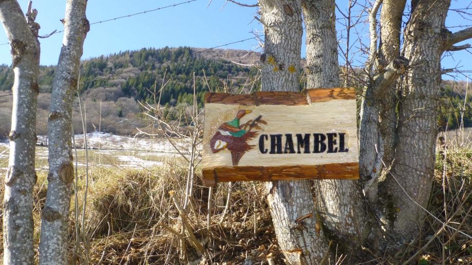 Chambel-All1.jpg