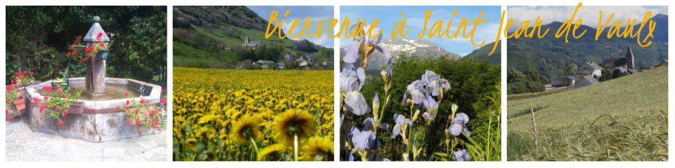Bienvenue sur le blog de la mairie de Saint-Jean de Vaulx
