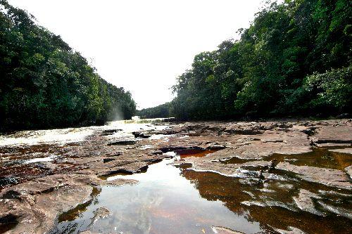 Un des cours d'eau de la Grand Sabana, oui l'eau est rouge !