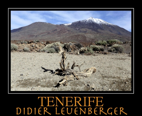 TENERIFE D5 DECEMBRE 2013 88.jpg
