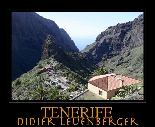 TENERIFE D5 DECEMBRE 2013 690.jpg