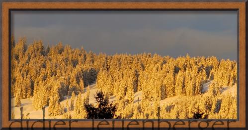 SUISSE NIREMONT 21 FEVRIER 2014 4 - Version 3.png