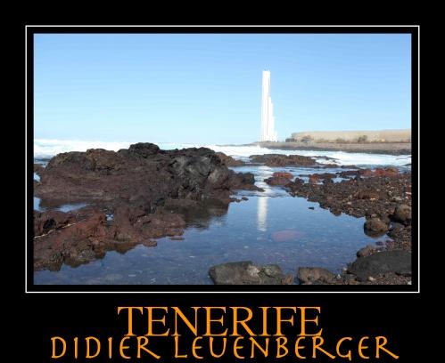 TENERIFE D5 DECEMBRE 2013 1163.jpg