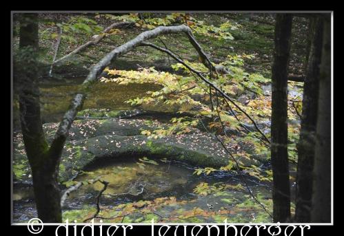 SUISSE AREUSE & VAN N 7100 03 OCTOBRE 2014 314.jpg