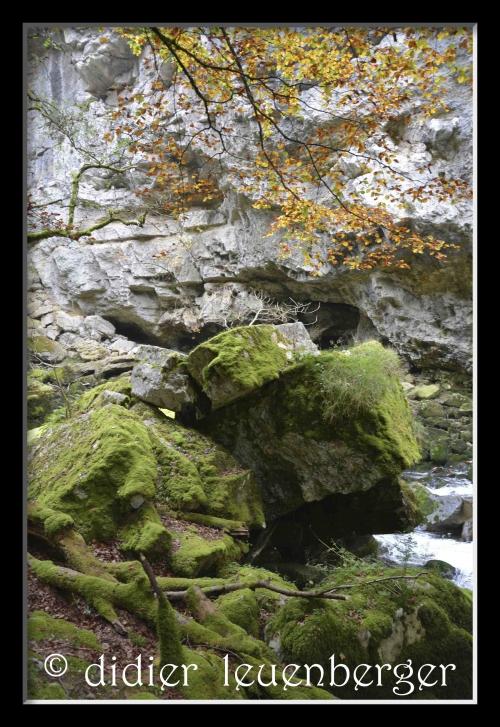 SUISSE AREUSE & VAN N 7100 03 OCTOBRE 2014 326.jpg
