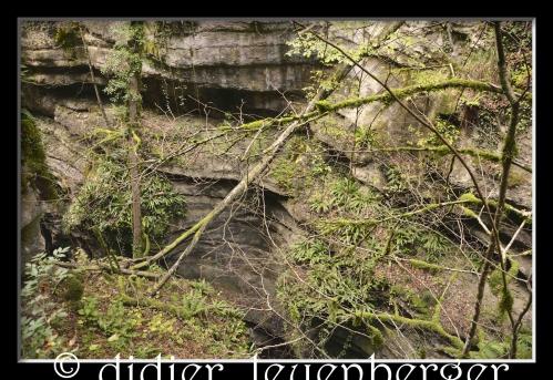 SUISSE AREUSE & VAN N 7100 03 OCTOBRE 2014 440 - Version 3.jpg