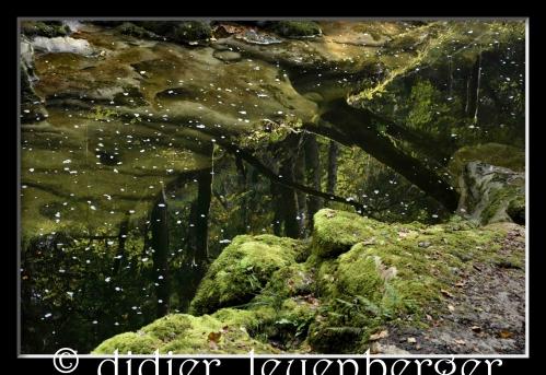 SUISSE AREUSE & VAN N 7100 03 OCTOBRE 2014 482 - Version 2.jpg