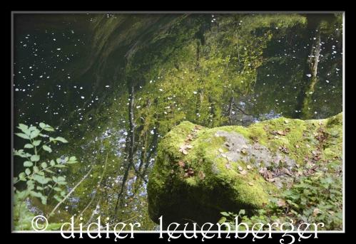 SUISSE AREUSE & VAN N 7100 03 OCTOBRE 2014 484.jpg