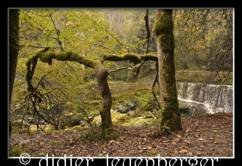 SUISSE AREUSE & VAN N 7100 03 OCTOBRE 2014 91 - Version 4.jpg