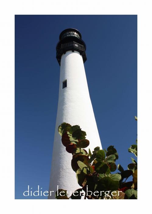 USA FLORIDE DECEMBRE 2010 2932.jpg