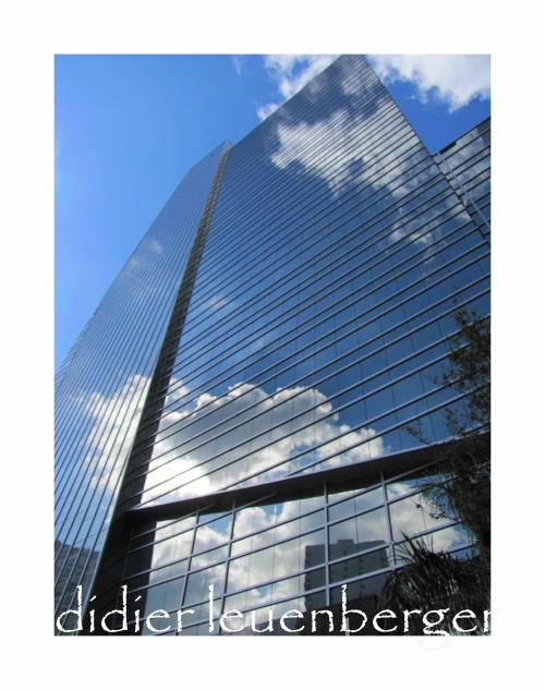 USA FLORIDE DECEMBRE 2010 123.jpg