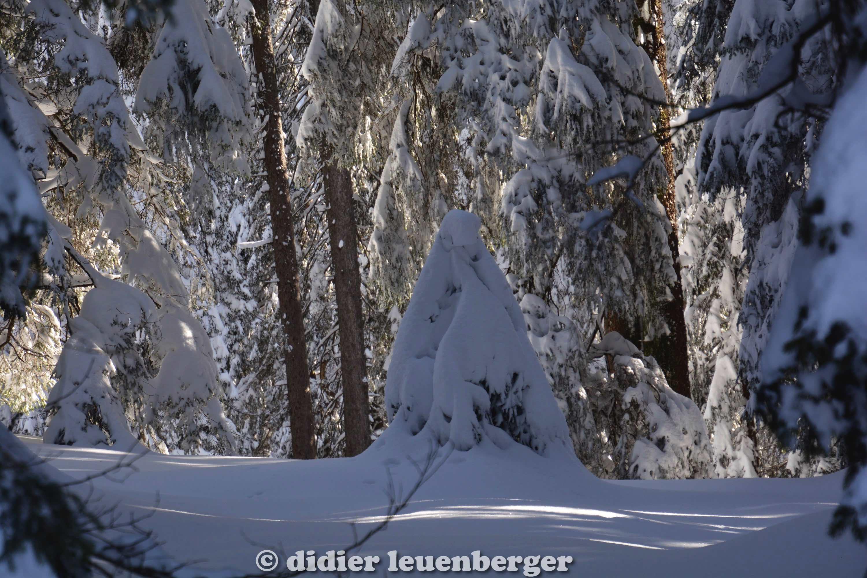 didier leuenberger -31.jpg