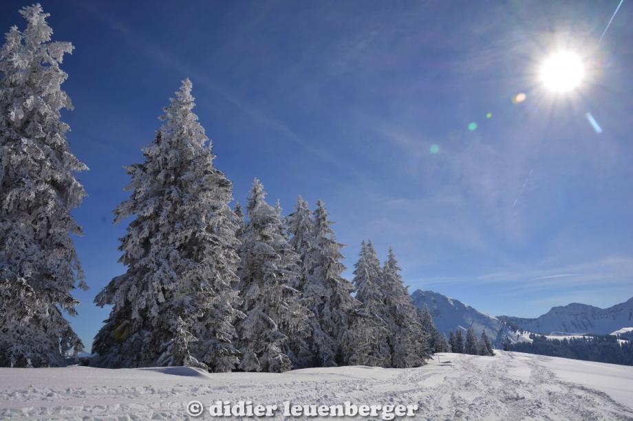 didier leuenberger -240.jpg