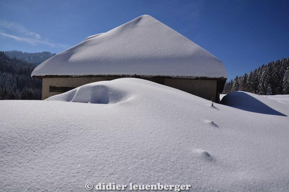 didier leuenberger -352.jpg