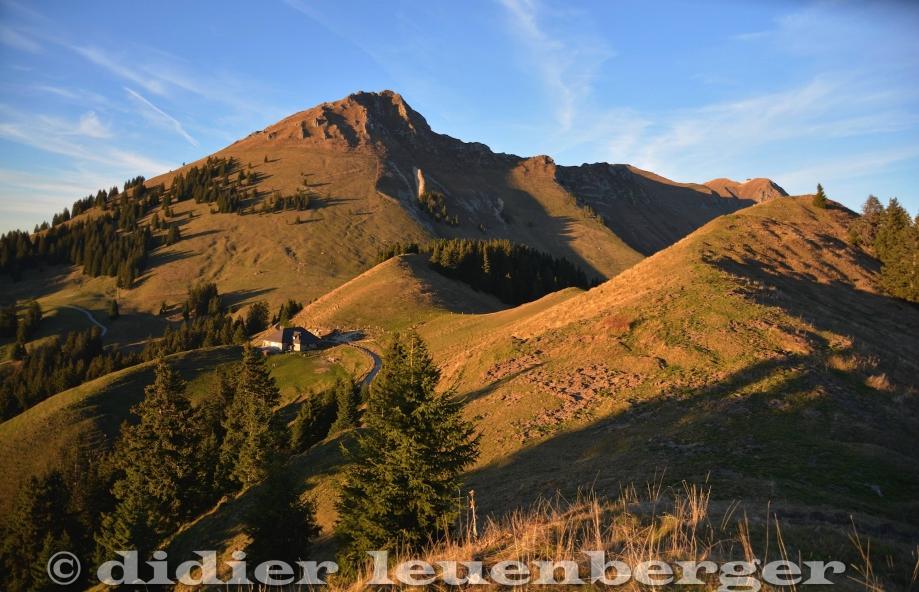 © didier  leuenber-26.jpg