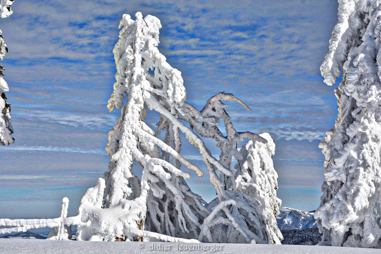 SUISSE iNIREMONT 3 FEVRIER 2015 501_HDR.jpg