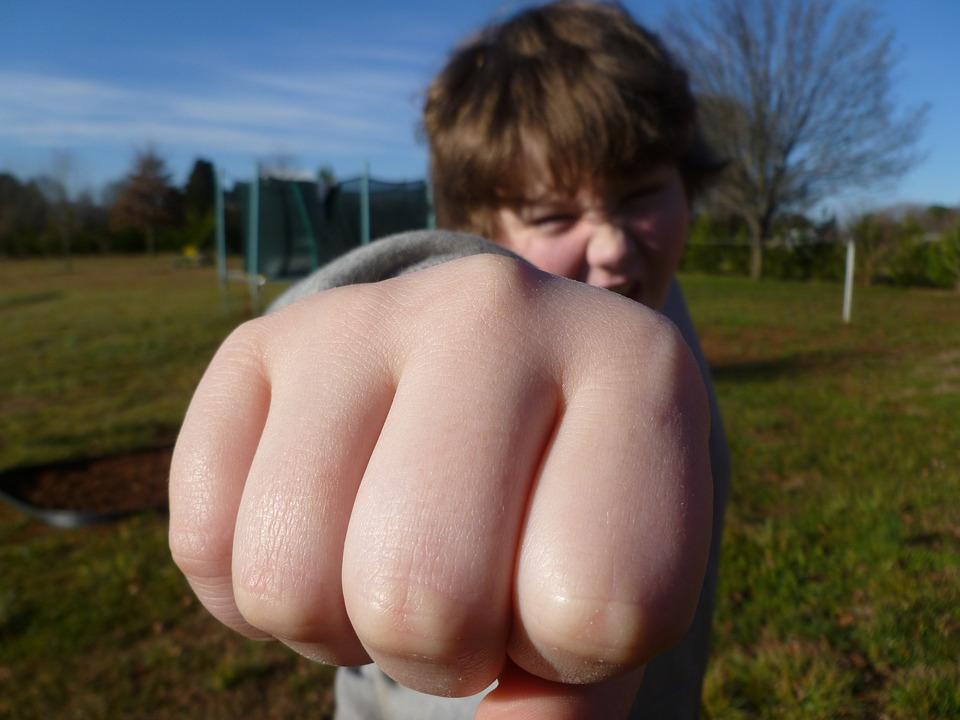 fist-bump-933916_960_720.jpg