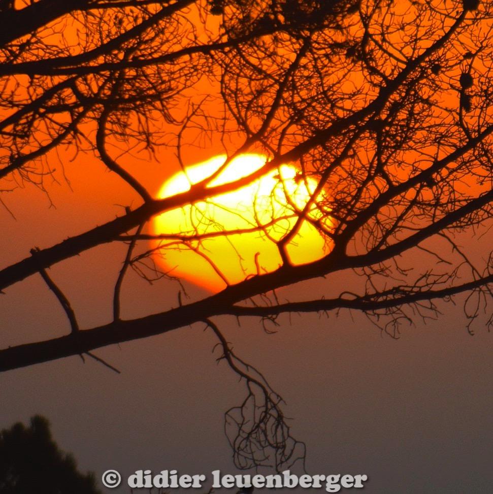 didier leuenberger -253.jpg
