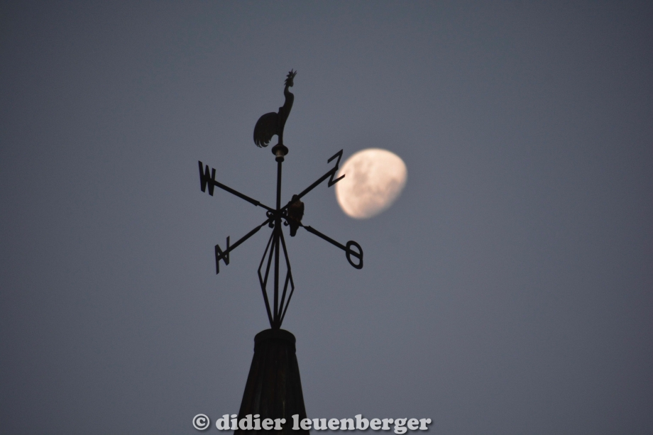 didier leuenberger -9.jpg