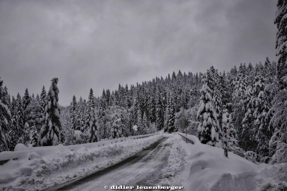 SUISSE PACCOTS PHOTO N7100 12 DECEMBRE 2017 6_HDR2.jpg
