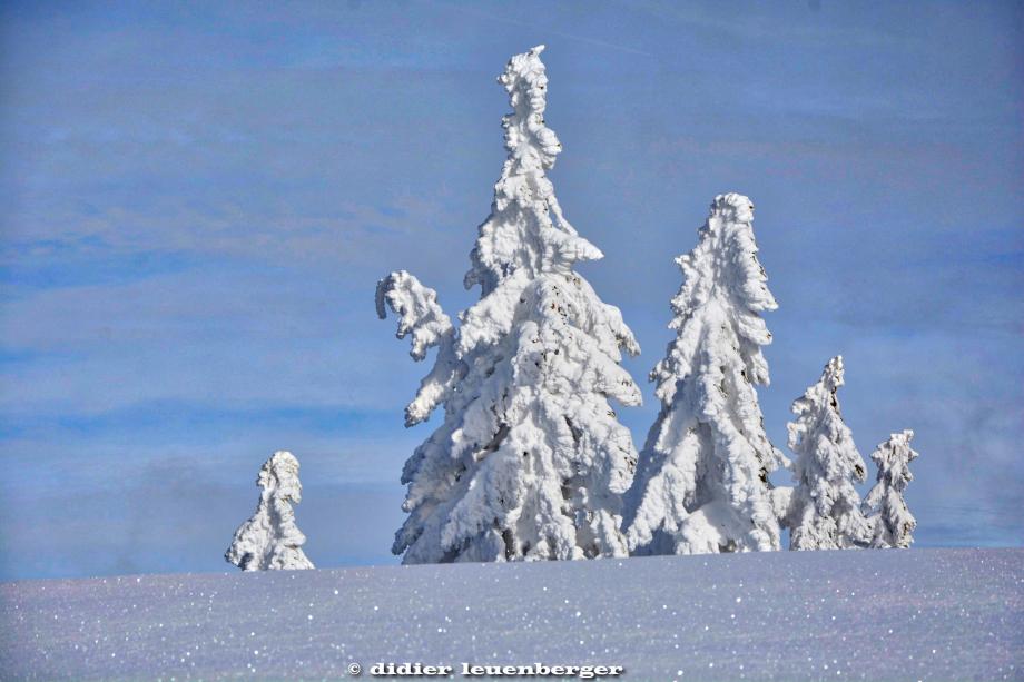 SUISSE NIREMONT 3 FEVRIER 2015 185_HDR1.jpg