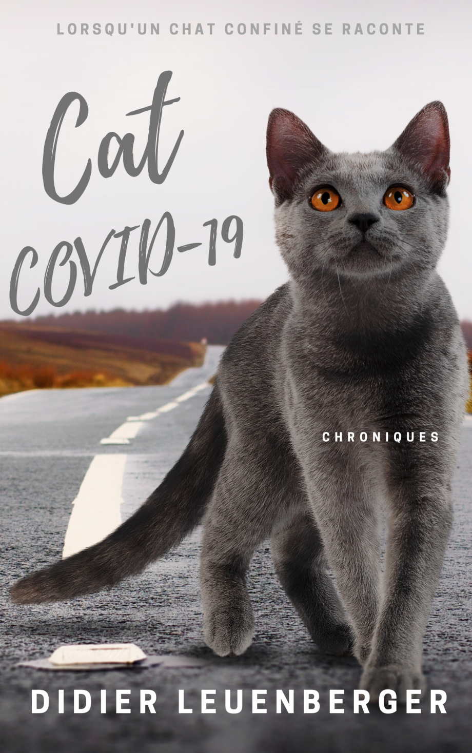 Cats Covid-19.png