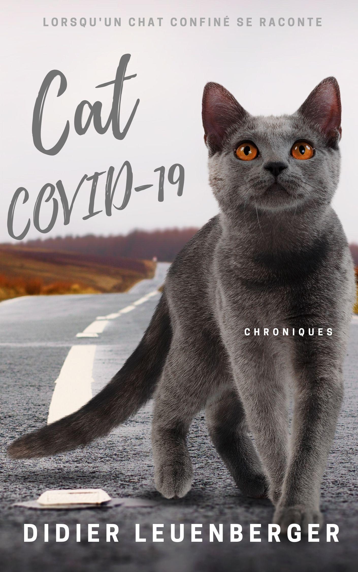 Cats Covid-19 2.jpg