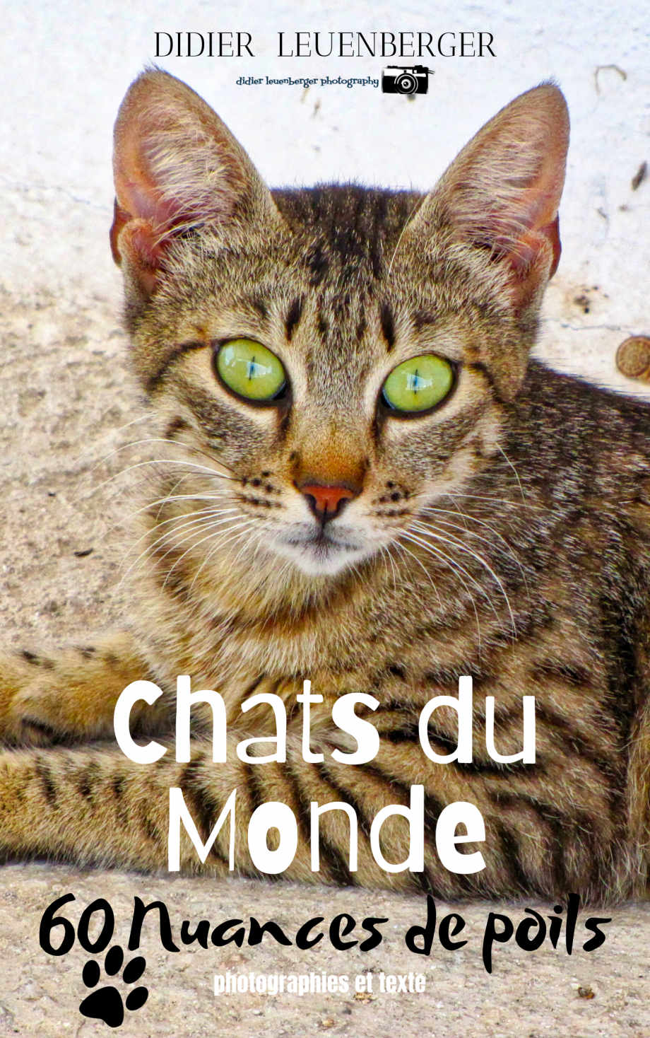 Chat du Mondephoto copie.png
