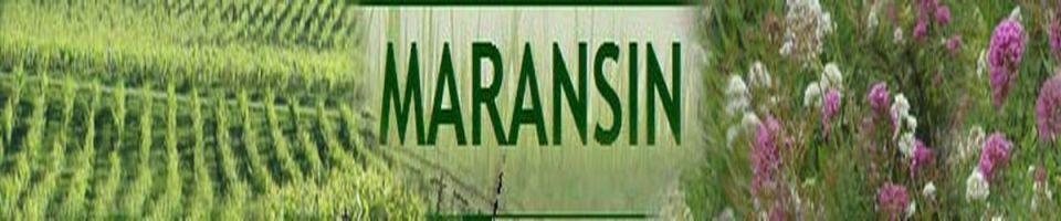 MARANSIN