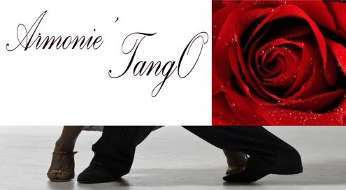 495x272banniere rose rouge- armonietango.jpg