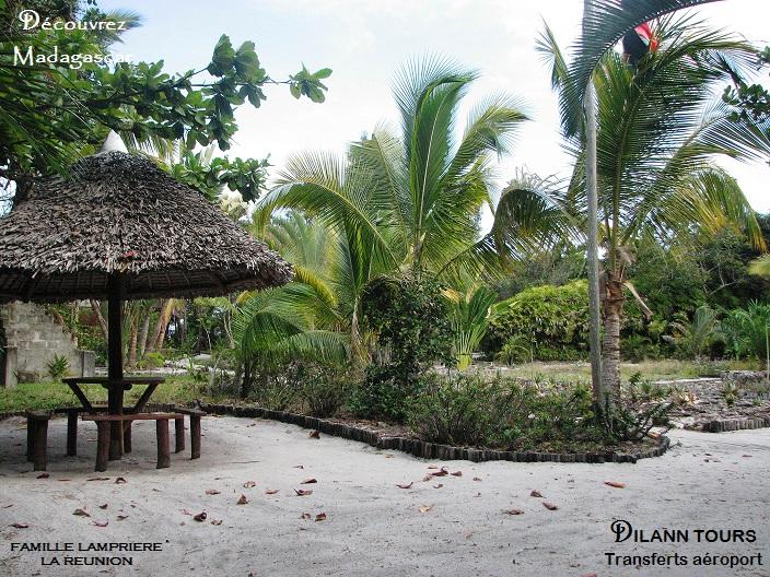 palmarium (50).jpg