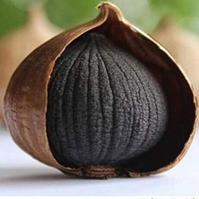 Ail-noir-monobulbe-R.jpg