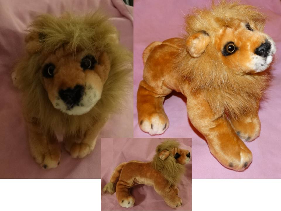 41 - lion.jpg