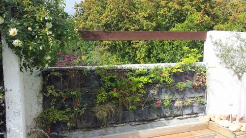 Mur 21 avr 14.jpg