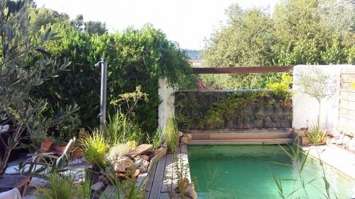 Mur et bassin 10 juil 14.jpg