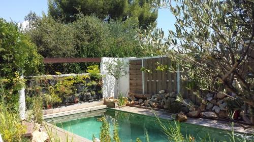 Vue piscine 4 août 14.jpg