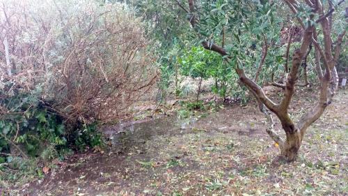 Surplus eau vers haie 4 saisons 19 sept 14.jpg