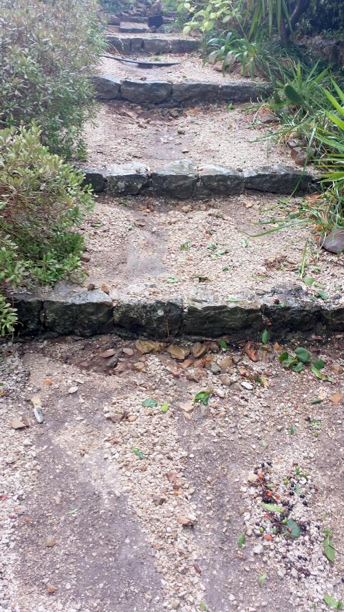 Ravinement escaliers après pluies 19 sept 14.jpg