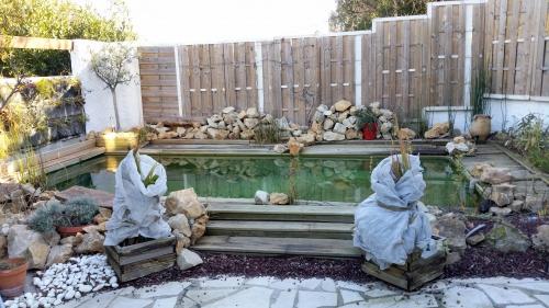 piscine avec geraniums sous voile hivernage 27 dec 14.jpg