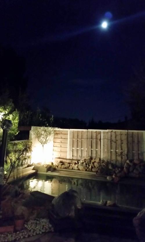 piscine et pleine lune 4 janv 15.jpg