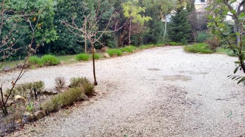 Séquence pluvieuse de circonstance 19 janv 15.jpg