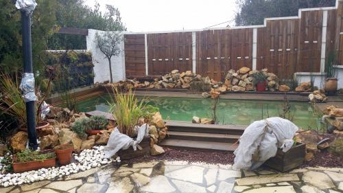 Vue piscine 21 janv 15.jpg