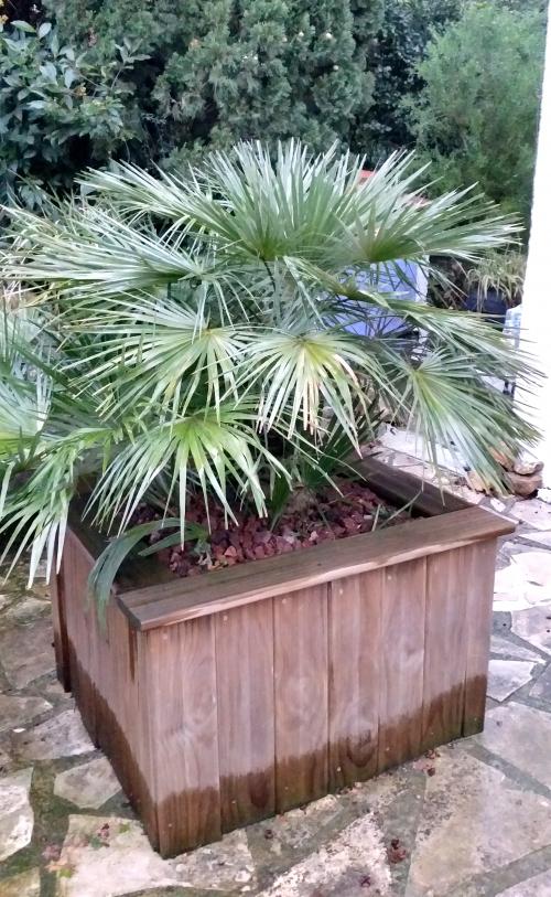 Niveau pluie dans pots 21 fév 15.jpg