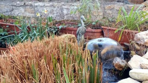 fontaine bassin 26 fev 15.jpg