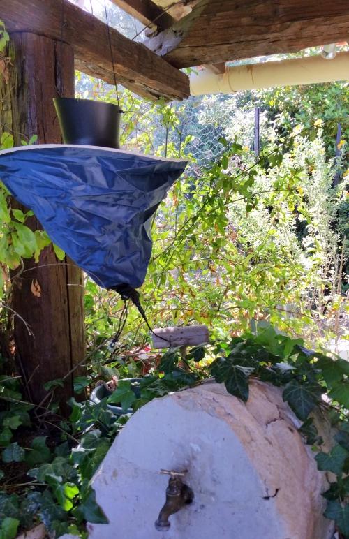 Piège anti moustiques terrasse été 7 mai 15.jpg