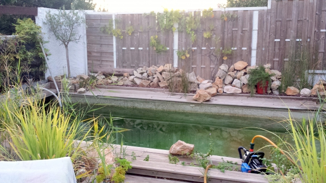 Opération vidange piscine 8 sept 15.jpg