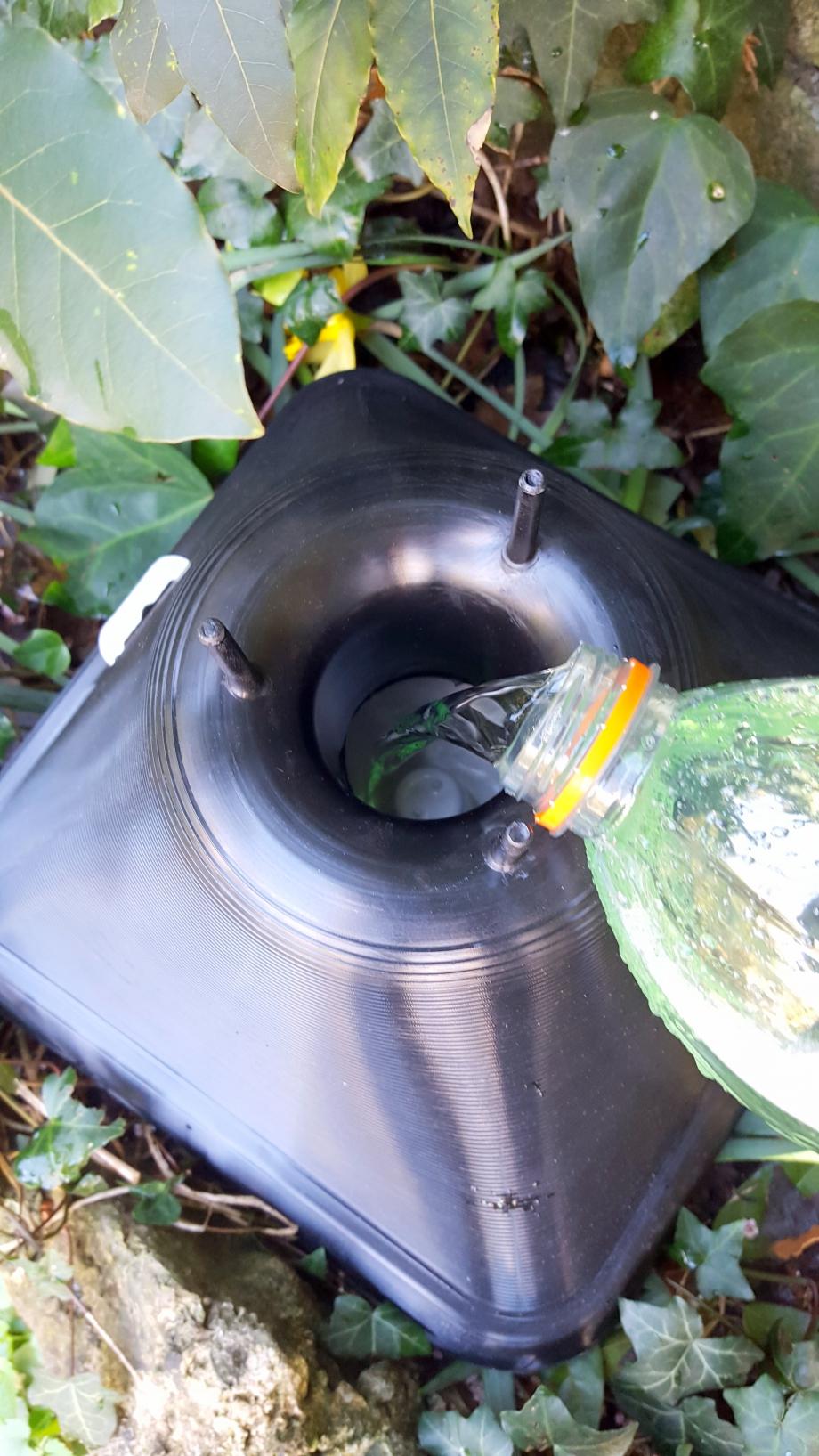 Introduction liquide vaisselle 5 mars 16.jpg